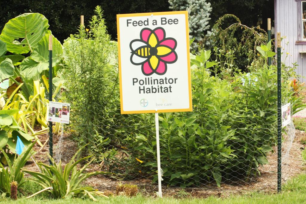 Find-a-Bee Habitat