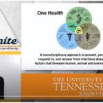 A video still of Deb Miller's One Health presentation at UT's MicNite.